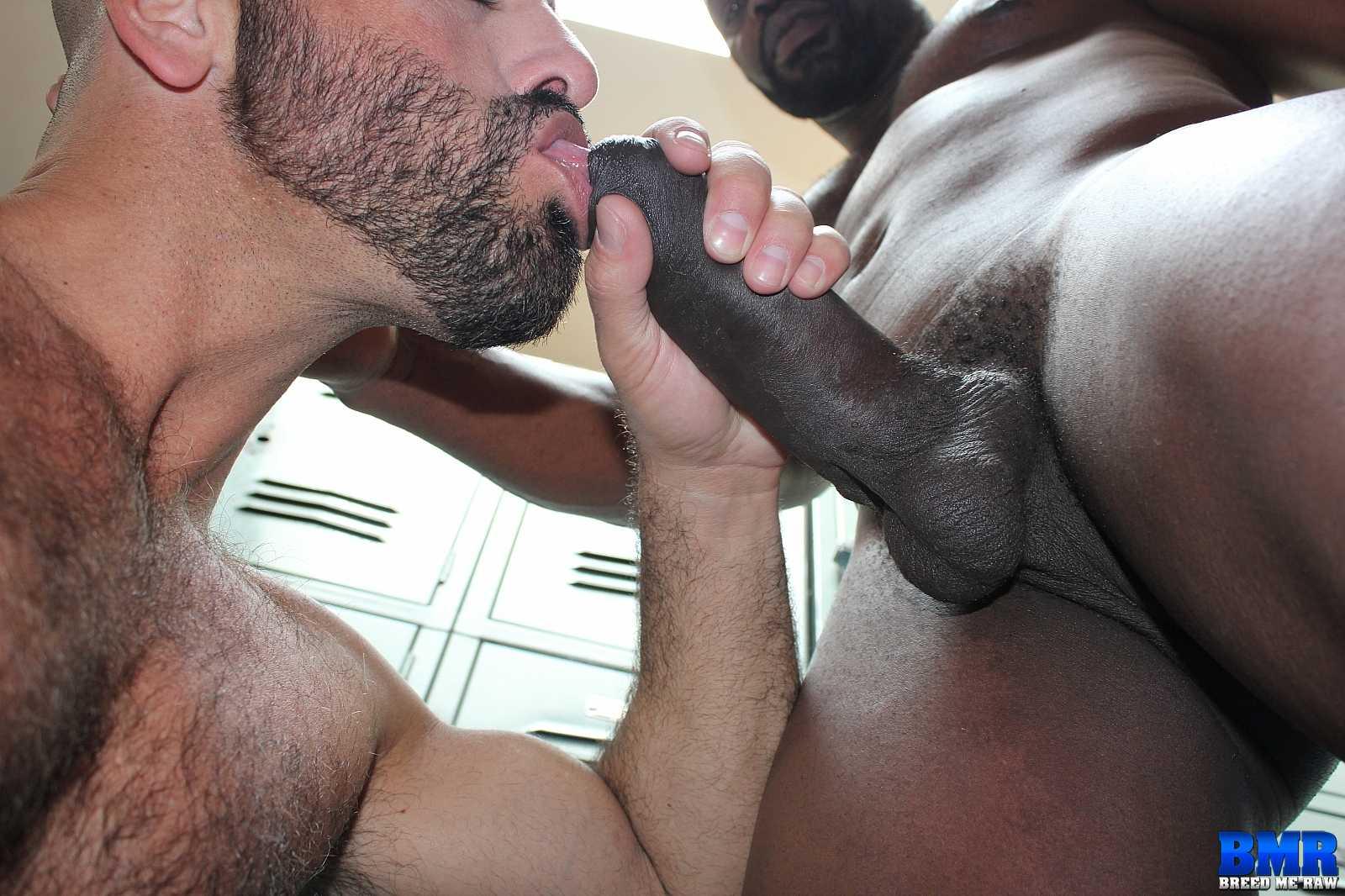 black gay penisbot