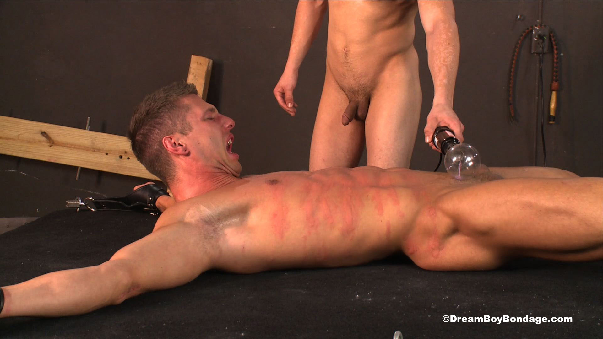 Free gay male bondage videos