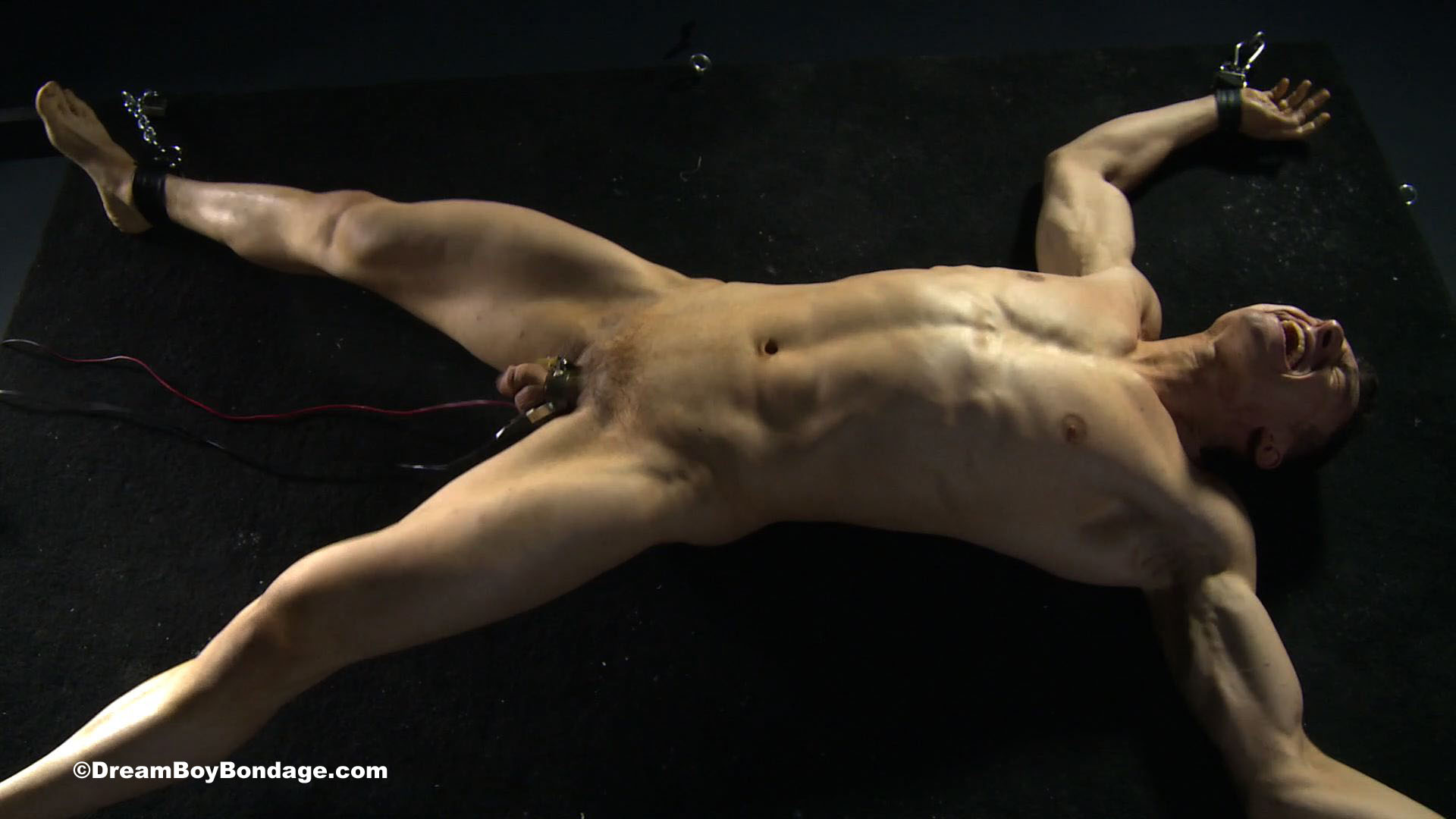 image Gay male bondage clips xxx massage wanked