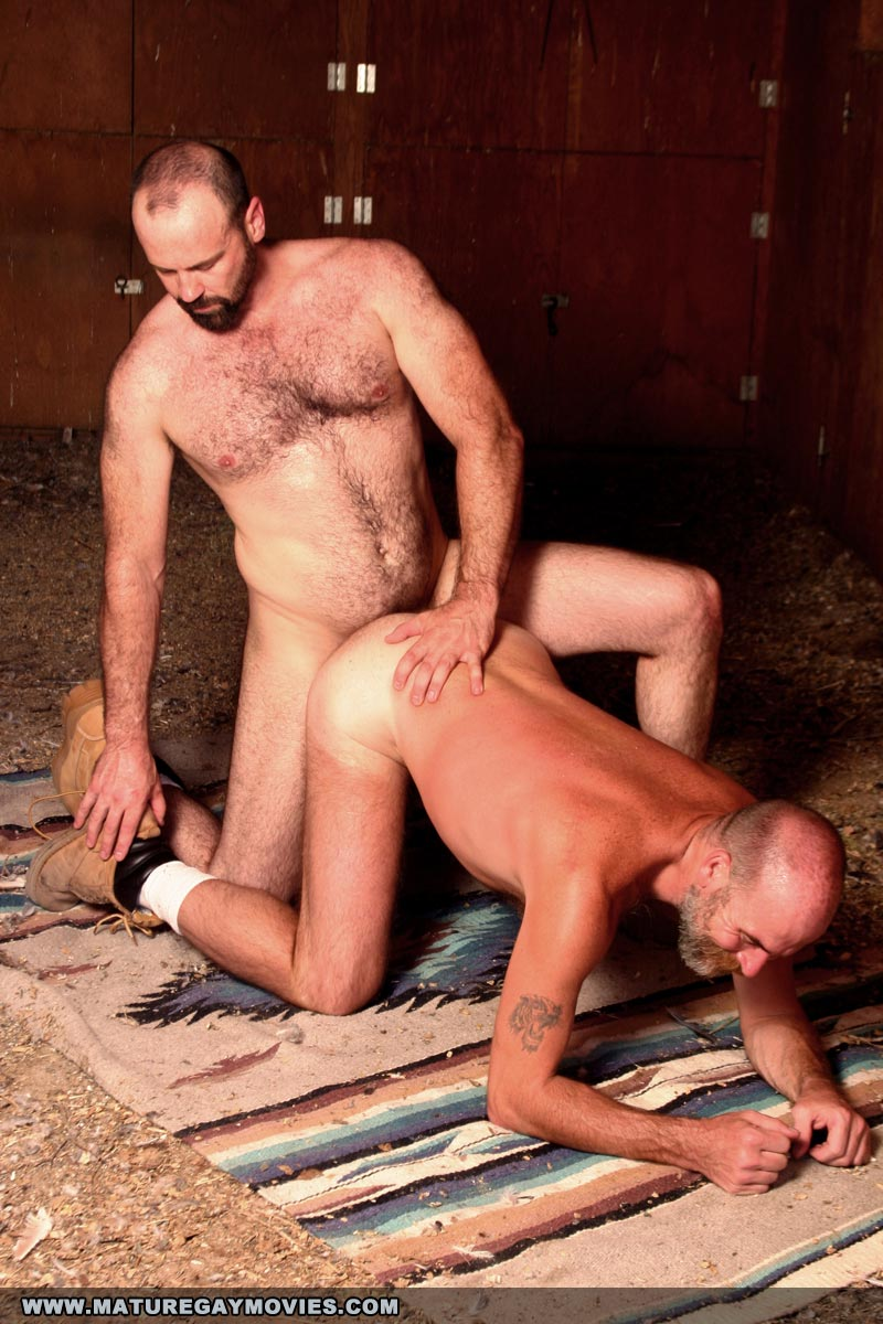 free mobile gay sex video downloads