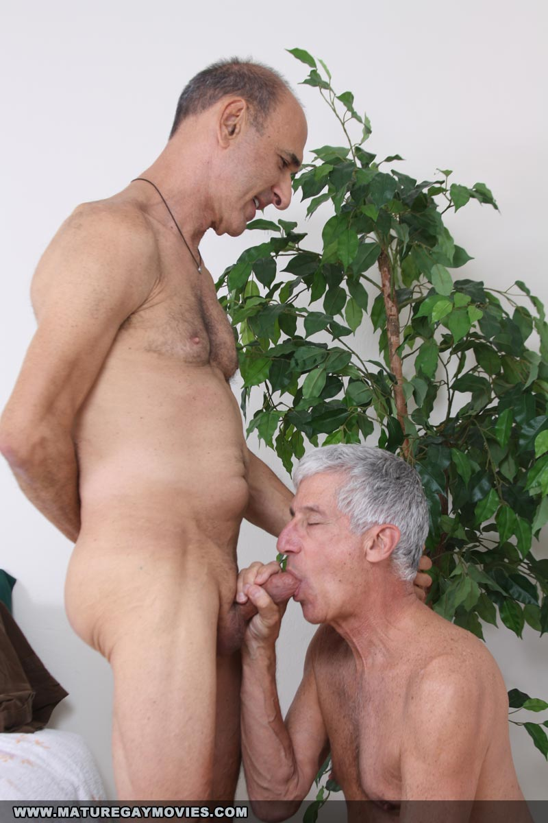 Mature Gay Porn Gay Male Tube