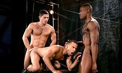 Trelino, Tyson and Dato